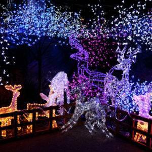 Stimmungsmacher – Gartenbeleuchtung zur Adventszeit