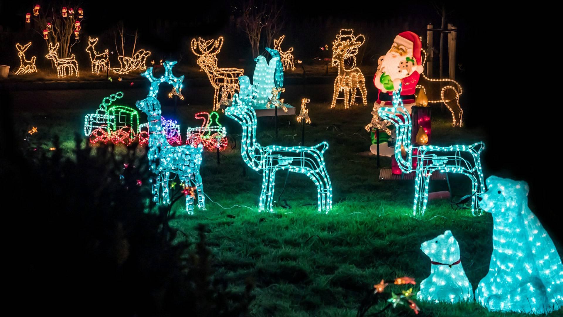Weihnachtsbeleutung für den Garten
