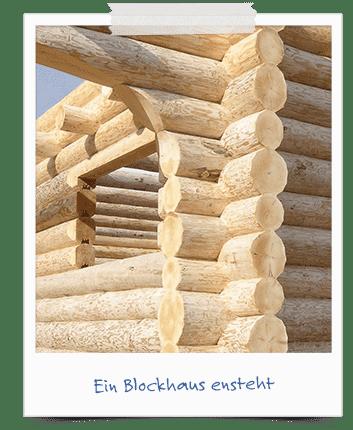 Natürlicher Baustoff Holz