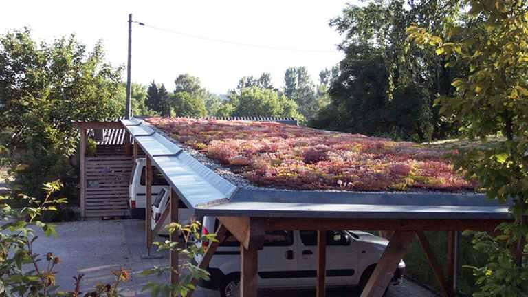 Dachbegrünung beim Carport