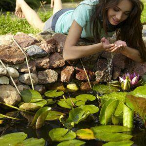 Biotop und Blickfang im Garten: Der eigene Teich