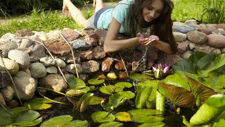 Der eigene Teich
