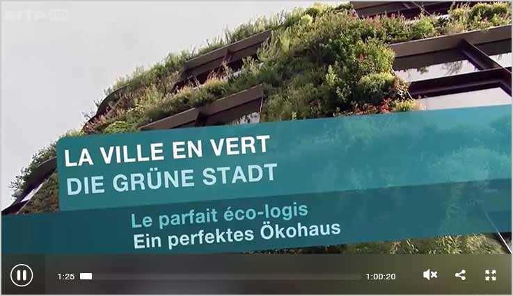 Ein perfektes Ökohaus - Dokumentation