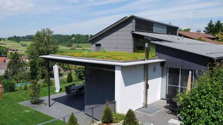 Beispiel einer extensiven Dachbegrünung