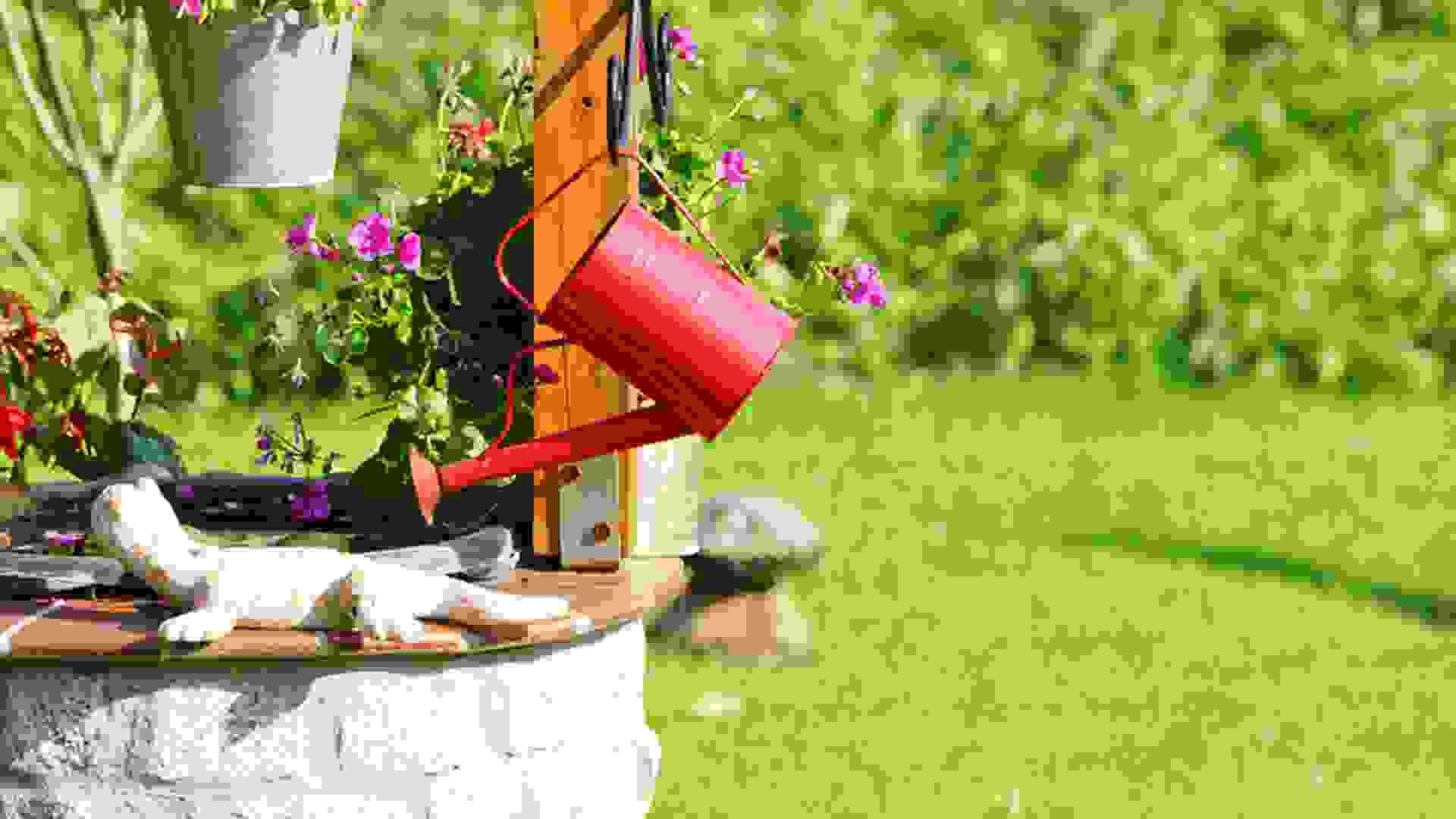 Des Deutschen liebstes Kind: der eigene Garten zum eigenen Haus.