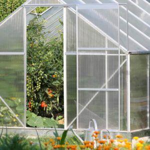 Gärtnern leicht gemacht – mit Gewächshaus im Garten