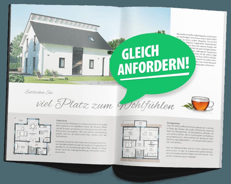 Pultdachhaus Katalog