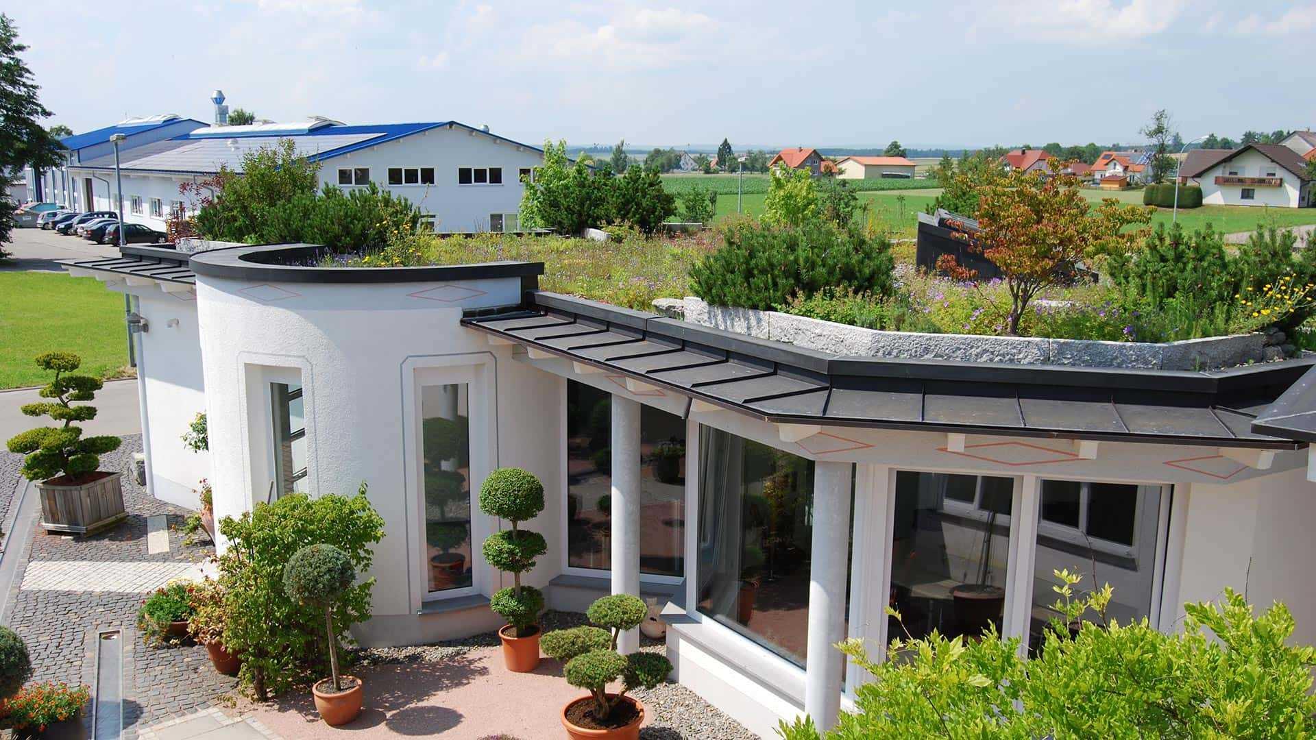 Intensive Dachbegrünung Beispielhaus