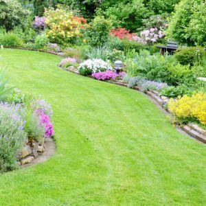 Rasen – das Herzstück des Gartens