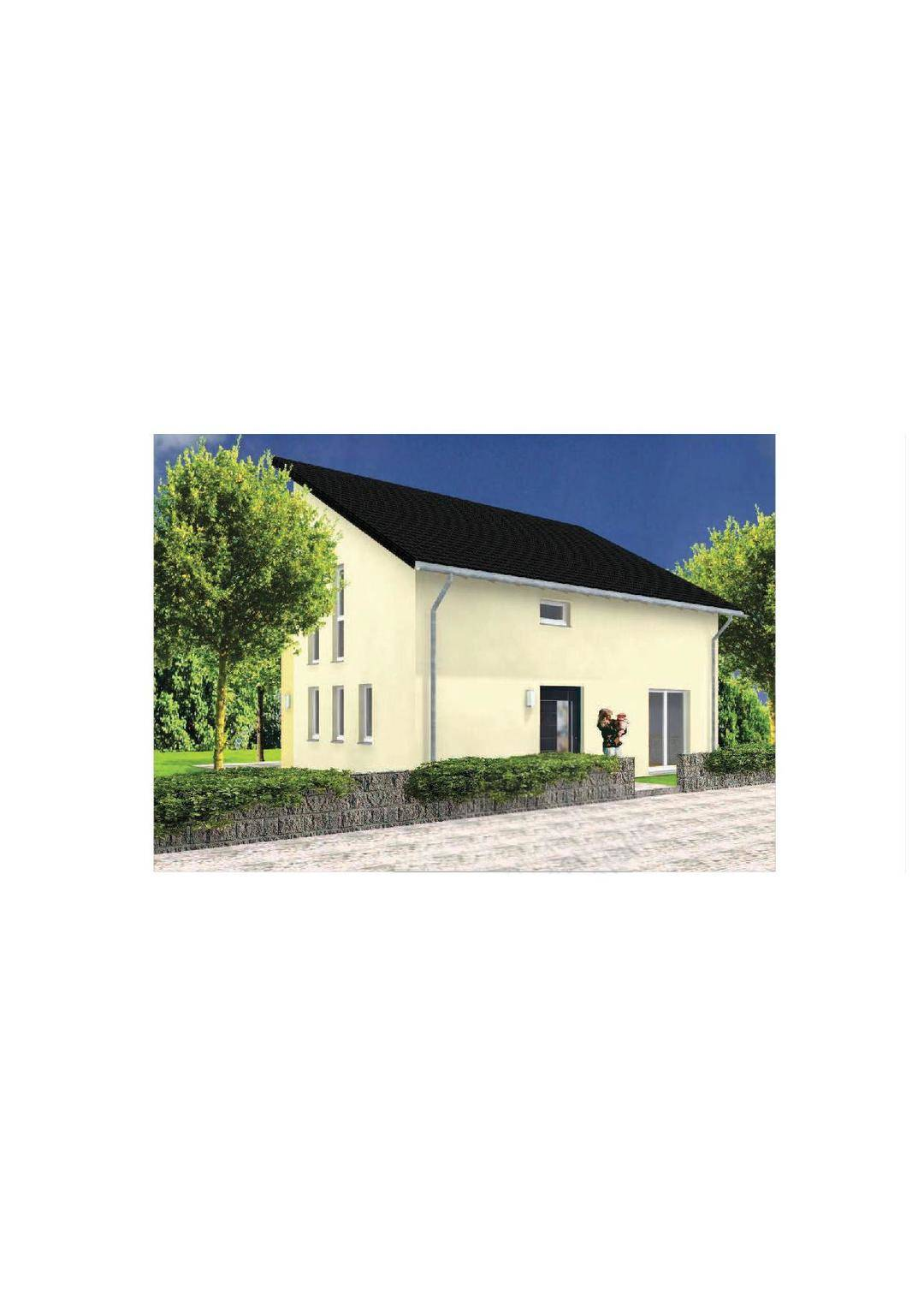 p32697.254250.1351783216329_003_Pultdachhaus_V12-130_Eingangsseite.jpg